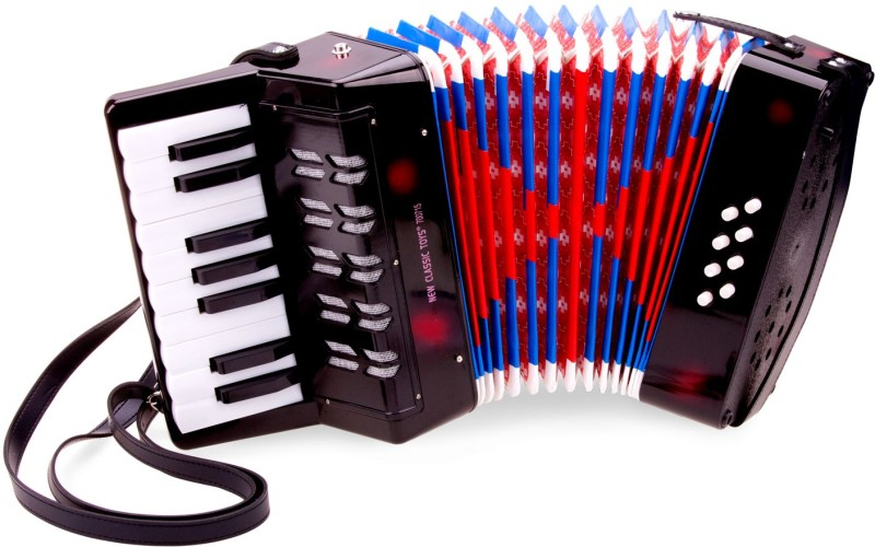 Accordeon groot New Classic Toys 23x24x10 cm