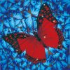 Flutterby-Red-Diamond-Dotz:-30x30-cm-DD5020